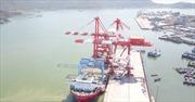 Kiến nghị thu hồi lại cảng Quy Nhơn - Bài 3: Chưa thỏa thuận được việc thu hồi cổ phần chi phối