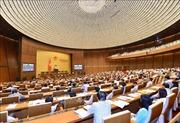 Quốc hội biểu quyết 5 Luật và thảo luận dự án Luật Thi hành án hình sự (sửa đổi)
