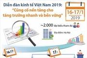 Diễn đàn kinh tế Việt Nam 2019: 'Củng cố nền tảng cho tăng trưởng nhanh và bền vững'