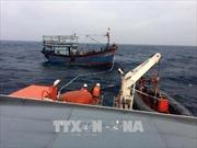 Cứu nạn tàu cá cùng 8 ngư dân gặp sự cố trên vùng biển Bình Thuận