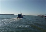 Rộn ràng Lễ ra khơi đánh bắt hải sản tại Bình Châu