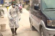 Hưng Yên cấp bách phòng chống dịch tả lợn châu Phi