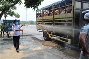 Bộ trưởng Nguyễn Xuân Cường: Ngăn chặn tối đa dịch tả lợn châu Phi lây lan vào miền Nam