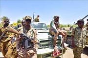 Phe đối lập tại Sudan chấp nhận đề xuất về chuyển tiếp chính trị