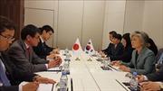 Nhật Bản, Hàn Quốc đàm phán về vấn đề kiểm tra hải sản và lao động khổ sai