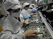 Nhiều doanh nghiệp di dời cơ sở sản xuất khỏi 'công xưởng của thế giới'