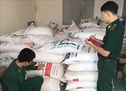 Mật phục, bắt giữ gần 1 tấn đường cát nhập lậu từ Campuchia