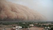 Bụi Sahara, kẻ 'phá hoại'mùa hè Caribe