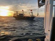 Huy động tàu giã cào tìm kiếm 9 thuyền viên mất tích