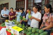 Sơn La sản xuất gắn với chế biến, tiêu thụ và xuất khẩu nông sản