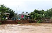Nguy cơ ngập lụt, sạt lở bờ sông tại An Giang, Đồng Tháp