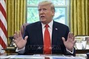Đảng Dân chủ công bố tài liệu nêu bằng chứng buộc tội Tổng thống Trump