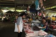 Người dân chưa vội tái đàn ồ ạtdù giá lợn tăng cao