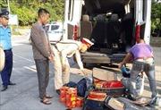 Bắt giữ đối tượng vận chuyển 75 kg pháo hoa