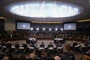 Hội nghị Ngoại trưởng NATO 'nóng'vấn đề cải tổ