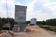 Tây Ninh tăng cường quản lý các cơ sở nuôi chim yến,xử lý nghiêm trường hợp vi phạm