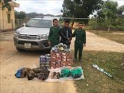 Dùng xe bán tải vận chuyển 136 kg pháo và 30 kg thịt thú rừng