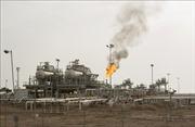 OPEC nâng dự báo nhu cầu dầu mỏ năm 2020