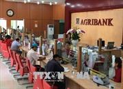 Cổ phần hoá Agribank: Chậm để tiến xa