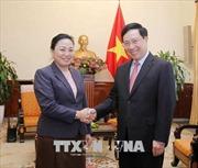 Phó Thủ tướng Phạm Bình Minh tiếp Thứ trưởng Bộ Ngoại giao Lào