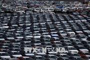 EU để ngỏ khả năng miễn thuế đối với ô tô nhập khẩu từ Mỹ