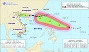 Chủ động ứng phó với áp thấp nhiệt đới trên đất liền và siêu bão Mangkhut