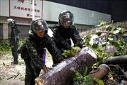 Tin thêm về ảnh hưởng của cơn bão Mangkhut tại Trung Quốc