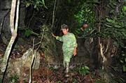 Người giữ rừng ở Lũng Vai