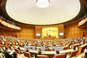 Chuẩn bị kỳ họp thứ 6, Quốc hội khóa XIV: Nhiều ý kiến đóng góp xây dựng sát với cuộc sống
