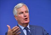 EU khẳng định nỗ lực vì một qui trình Brexit có trật tự