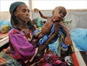 Chống đói nghèo để bảo đảm quyền con người