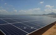 Thi công 3 ca liên tục để sớm đưa nhà máy điện gió và điện mặt trời vào hoạt động