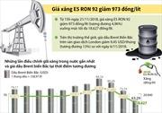 Giá xăng E5 RON 92 giảm 973 đồng/lít xuống mức tối đa