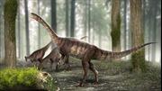 Phát hiện hóa thạch khủng long cổ dài lâu đời nhất từ trước đến nay