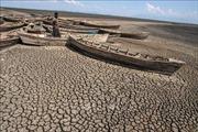 WB chi 200 tỷ USD cho kế hoạch hành động chống biến đổi khí hậu
