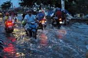 Gỡ vướng cho Dự án giải quyết ngập do triều khu vực TP Hồ Chí Minh