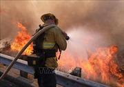Sơ tán dân trước nguy cơ lũ lụt sau cháy rừng ở California