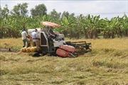 Phát huy vai trò Hội Nông dân Việt Nam trong phát triển 'tam nông'