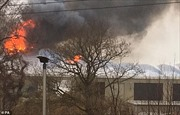Cháy vườn thú có mái che lớn nhất Anh