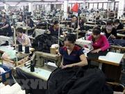 Thưởng Tết cho công nhân và người lao động tại Bình Dương cao nhất 120 triệu đồng/người