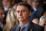 Brazil hợp pháp hóa việc sử dụng súng