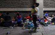 Nhóm họp bàn kế hoạch ngăn chặn tình trạng di cư trái phép từ khu vực Trung Mỹ