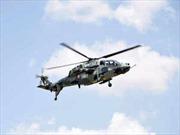 Ấn Độ thử thành công trực thăng tấn công tự chế tạo