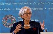 IMF giải ngân khoản vay 2 tỷ USD cho Ai Cập