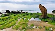 Ngành Văn hóa Bình Thuận kiến nghị trả lại hiện trạng thắng cảnh bãi đá 7 màu và bãi rêu