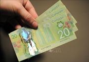 Đồng nội tệ của Canada mất giá mạnh