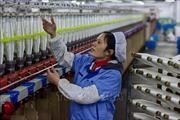 Trung Quốc cắt giảm thuế VAT trong nhiều lĩnh vực để thúc đẩy kinh tế