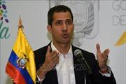 IMF không công nhận 'tổng thống tự phong' ở Venezuela