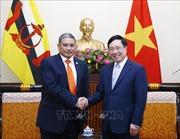 Việt Nam và Brunei nhất trí cùng xem xét tăng thời hạn miễn thị thực cho công dân hai nước