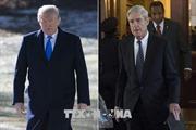 Tổng thống Mỹ bác bỏ báo cáo điều tra của Công tố viên R.Mueller